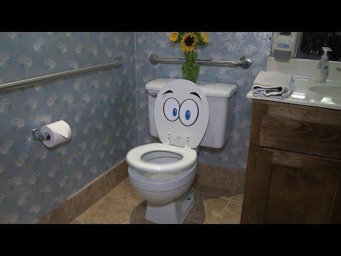 """Toilet and """"Non-Toilet"""" Paper"""