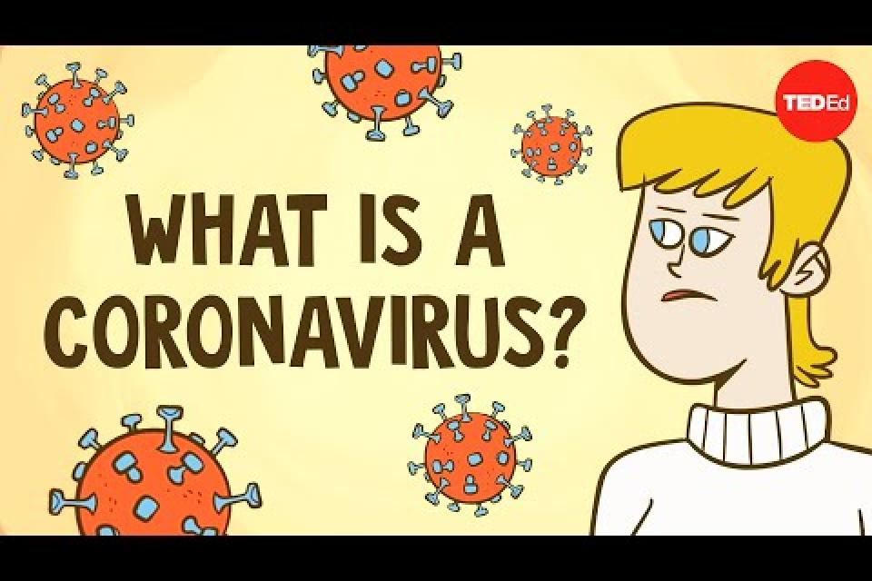 SARS & Other Coronaviruses